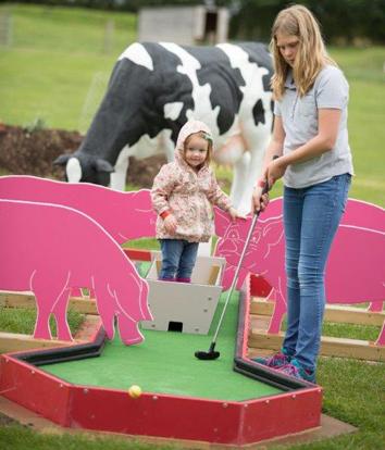 Farm Themed Crazy Golf