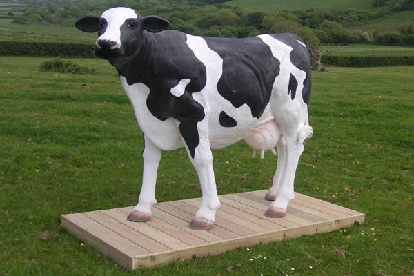 Molly Cow